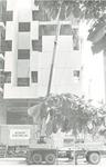 Mount Sinai, main hospital entrance